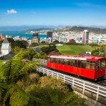 Menawarkan keindahan alam yang masih asri, New Zealand menjadi salah satu destinasi wisata favorit yang terbaru. Kamu berencana liburan ke sana? Yuk, simak rekomendasi BP-Guide mengenai oleh-oleh yang wajib dibawa pulang dari New Zealand.