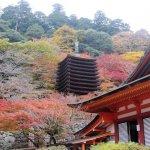 奈良はあまり派手ではない印象ではあるものの、数々の歴史ある寺院があり、また郊外に出れば自然も多い土地です。こちらでは2018年最新情報として、結婚記念日を楽しみたい夫婦に向けた奈良の温泉宿を紹介しています。観光地からのアクセスが良いところや貸切風呂でゆっくりできる宿など、夫婦が特別な日をより仲良く過ごせる宿を見つけてくださいね。