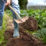 10 Rekomendasi Alat Pertanian Modern Ini Dapat Membuat Pekerjaan Mengolah Lahan Pertanian Menjadi Lebih Efisien (2019)