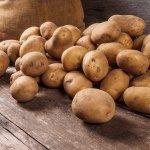 Kentang memang bukan makanan pokok orang Indonesia. Namun, kentang bisa diolah menjadi makanan lezat, bergizi, dan menjadi sumber karbohidrat yang baik sebagai alternatif pengganti nasi. Simak aneka resep olahan kentang yang nikmat dalam artikel ini.