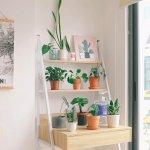 Ingin Rumah yang Estetik? Pilihlah 10 Rekomendasi Rak Bunga yang Cantik Ini(2020)