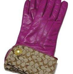 802d3bd2b4dc ブランド手袋(レディース) 人気ブランドランキング2019 | ベストプレゼント
