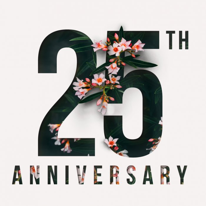 10 Wonderful Gifts For A Silver Jubilee How To Be Creative With 25th Wedding Anniversary Gift Ideas For Couples In India Updated 2019