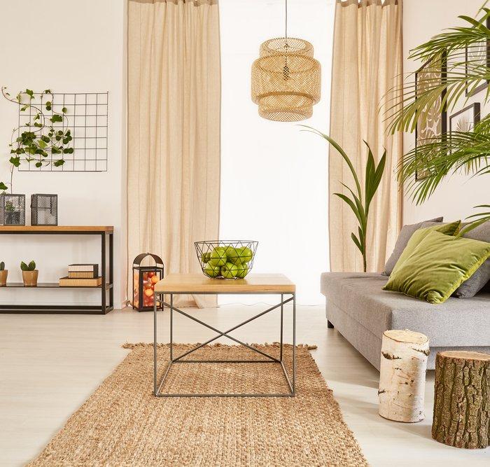 10 Tanaman Cantik Untuk Dekorasi Rumah Idaman Anda