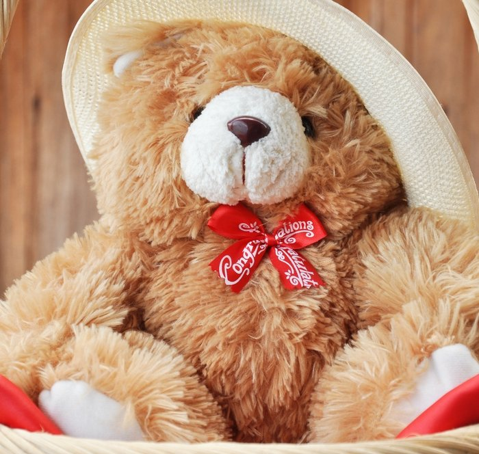12 Boneka Teddy Bear Lucu Dan Menggemaskan Sebagai Hadiah Spesial Untuk Yang Tersayang