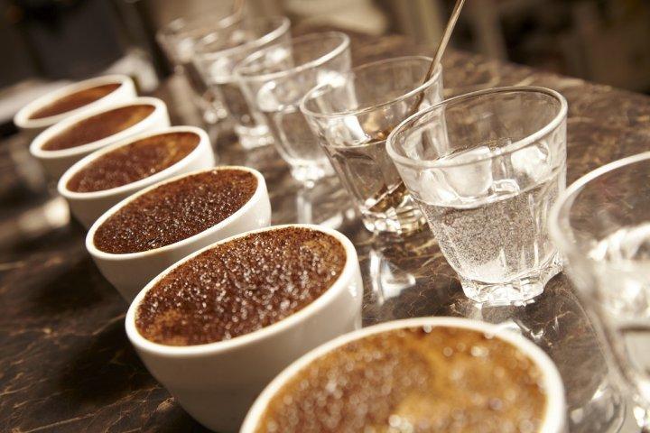 最高品質のスペシャルティコーヒーを手軽に楽しめる「ボトルアイスコーヒー2本セット(スマトラ/エチオピア)」の開発秘話を特集 Scrop COFFEE ROASTERS