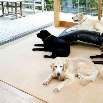 犬用のコルクマットおすすめランキングBEST10!今人気の滑らないマットを厳選!