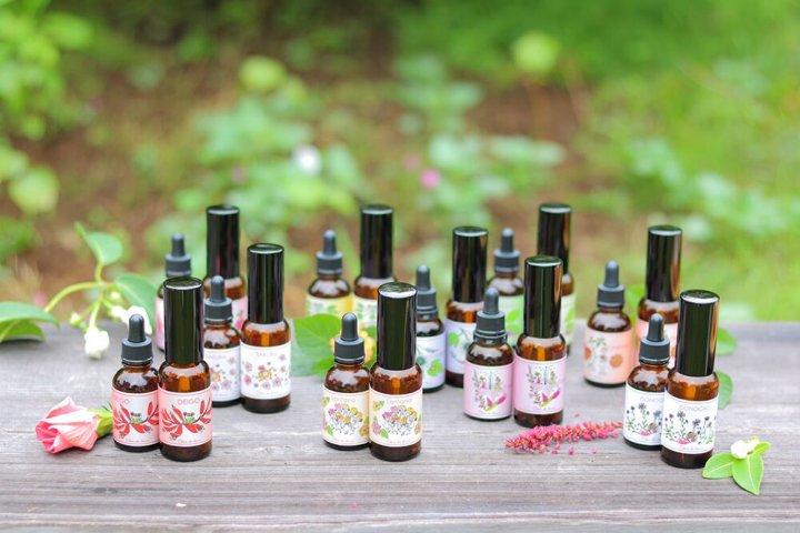 11種の香りとエネルギーから選べる「フラワーエッセンススプレー」の開発秘話に迫る!|株式会社 シャンドゥルール