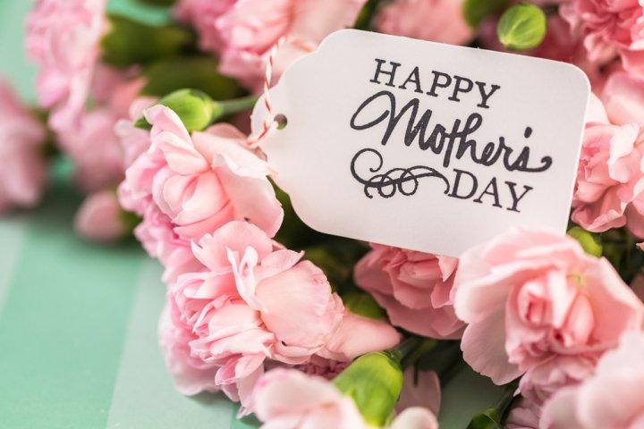 母の日に人気のカーネーションのプレゼント12選!鉢植え、花束、スイーツセットなどのおすすめを紹介