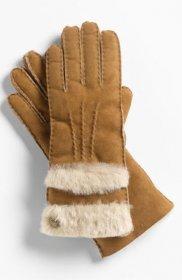 アグ オーストラリア 手袋(メンズ)