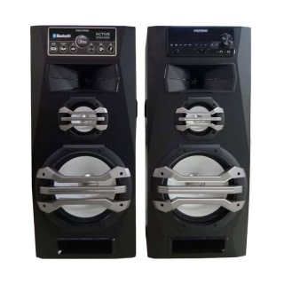 POLYTRON Active Speaker PAS 2A15