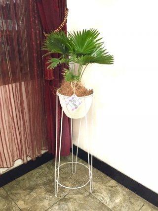 Rak Bunga Universal Standing Planter