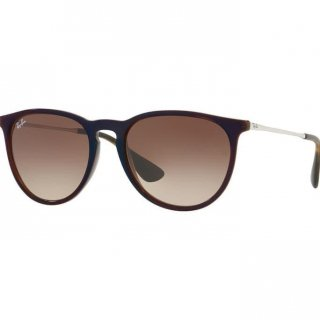 Erika Classic Sunglasses Rayban