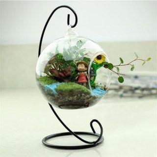 Creative Clear Glass Ball Vase Micro Landscape Air Plant Terrarium Succulent Flowerpot Container