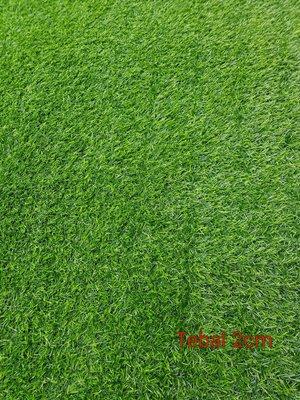 Rumput Sintetis - Super Grass - Hijau - Tebal 2 cm