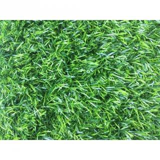 Rumput Sintetis Autumn Grass