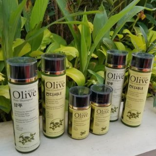 Paket SYB OLIVE 3 IN 1 Hair Care Treatment