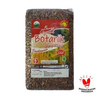 Beras Merah Botanik Organik 1kg