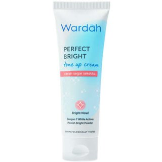 Perfect Bright Tone Up Cream
