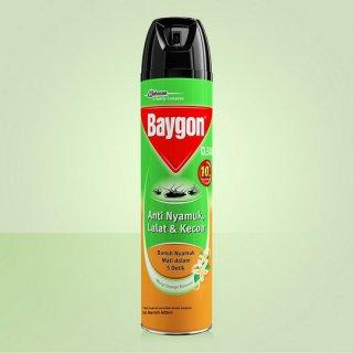 Baygon Aerosol Orange Blossom