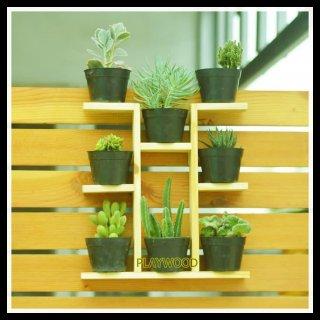 Rak Kayu Tempat Bunga Kaktus