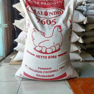 Malindo Feedmill Pakan Ayam Petelur Masa Produksi 7605