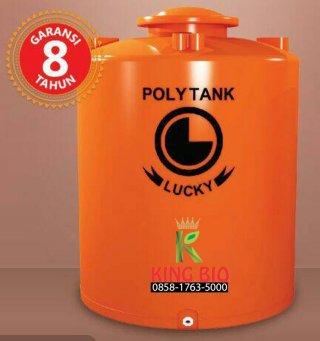 Lucky Polytank Standard 1100L - LS 110