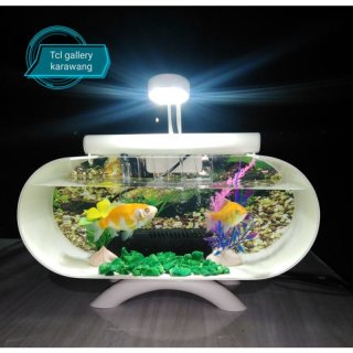 19. Ikan Hias Beserta Aquarium Mini yang Bisa Diletakkan di Meja