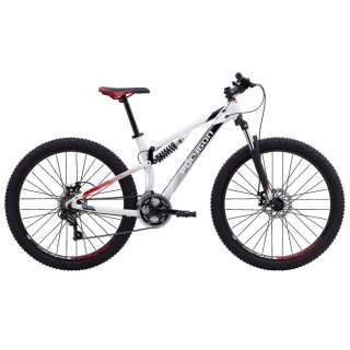 Sepeda MTB POLYGON RAYZ 1