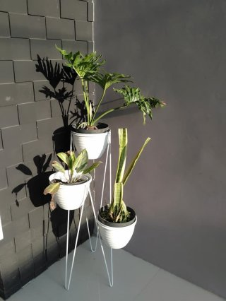 Standing Planter 3 in 1