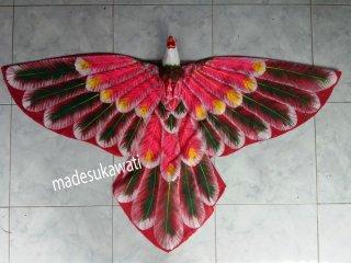 Burung Bali