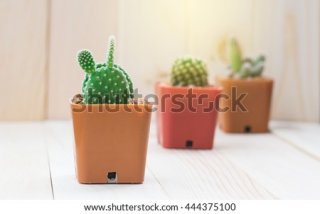 12. Hiasan Kaktus Mini Plastik, Memberikan Kesegaran di Ruangan