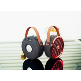 Speaker Bluetooth Mini DV08