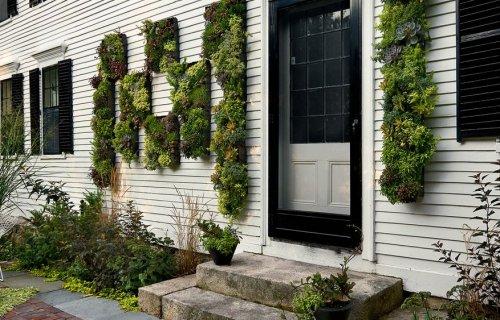 100+ Gambar Variasi Dinding Depan Rumah Paling Keren