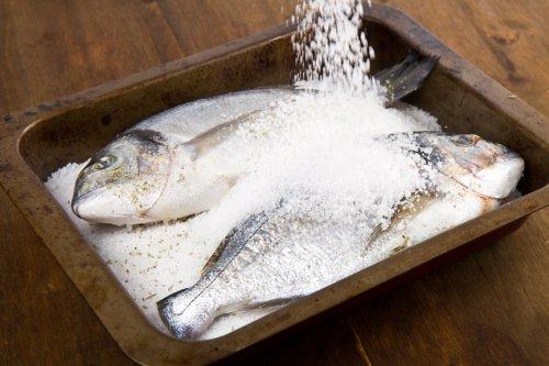 7 Rekomendasi Tepat Cara Mengawetkan Ikan Agar Lebih Tahan Lama dan Layak  Dikonsumsi (2018)
