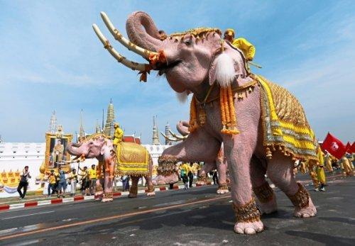 47++ Negara di asia tenggara yang mendapatkan julukan sebagai negara gajah putih information