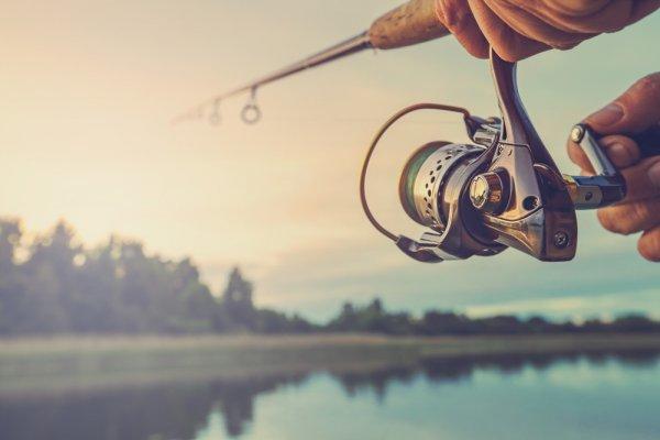 Hasil Tangkapan Ikan yang Besar Bisa Didapat dengan 10 Rekomendasi Reel Pancing 6000 Terbaik Ini