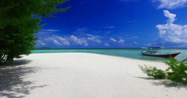 6 Tur Karimunjawa Ini akan Bawa Kamu ke Tempat yang Wajib Dikunjungi!