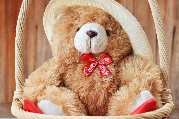 12 Boneka Teddy Bear Lucu dan Menggemaskan Sebagai Hadiah Spesial untuk  Yang Tersayang fd4e585d0e