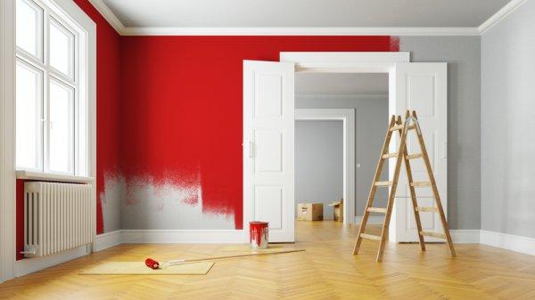 7 Rekomendasi Pembersih Cat yang Dapat Memudahkan Proses Pengecatan Dinding Ruangan (2019)