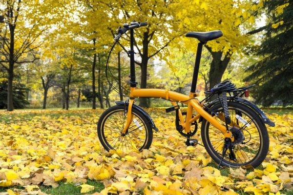 8 Rekomendasi Sepeda Lipat Anak yang Nyaman Digunakan (2021)
