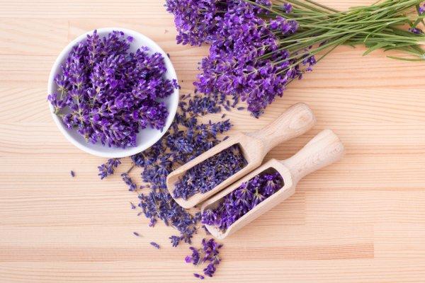 Jadi Lebih Sehat dan Percaya Diri dengan 10 Aromaterapi Lavender Pilihan