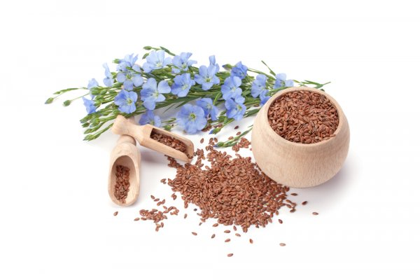 Baffled on How to Add In Flax Seeds Into Your Diet? Check Out the Health and Nutritional Benefits of Flax Seeds and Some Awesome Flax Seed Recipes