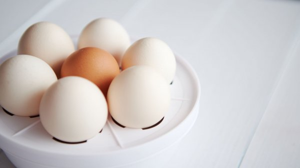 Don't Have Time to Make Breakfast or a Quick Meal? Make Perfect Hard-Boiled Eggs Every Time with the 10 Best Egg Boilers in India (2021)