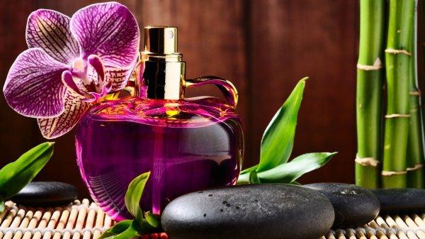 Pancarkan Kecantikan dengan 9+ Parfum Wanita yang Tahan Lama