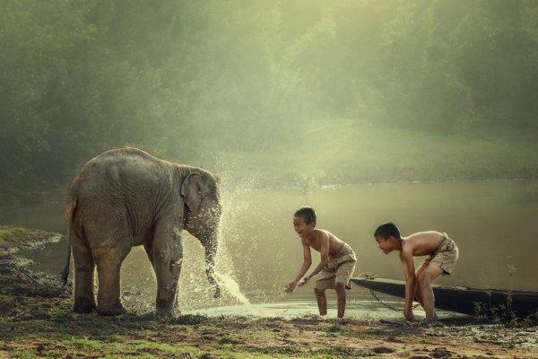 Sambil Menikmati Pemandangan Eksotik di Kamboja, Ini Rekomendasi 10+ Oleh-oleh Khas Kamboja