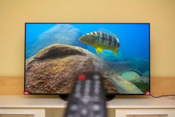 Manjakan Mata dengan Visual Tajam dari 10 Rekomendasi TV OLED Terbaik Tahun 2021 Ini!