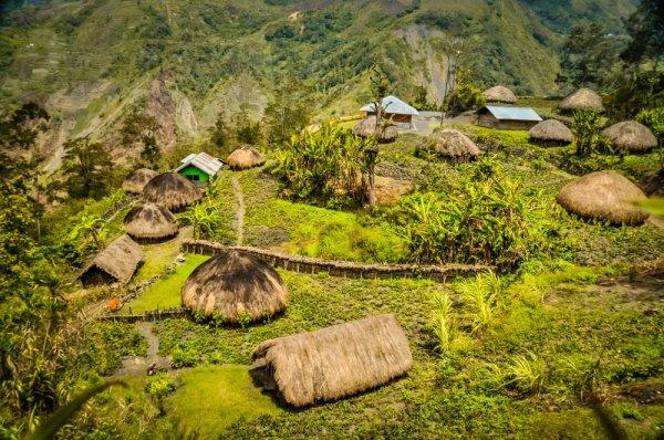 Jangan Sampai Lupa Membeli Salah Satu dari 10 Oleh-oleh Khas Papua yang Unik Ini Saat Berkunjung ke Papua