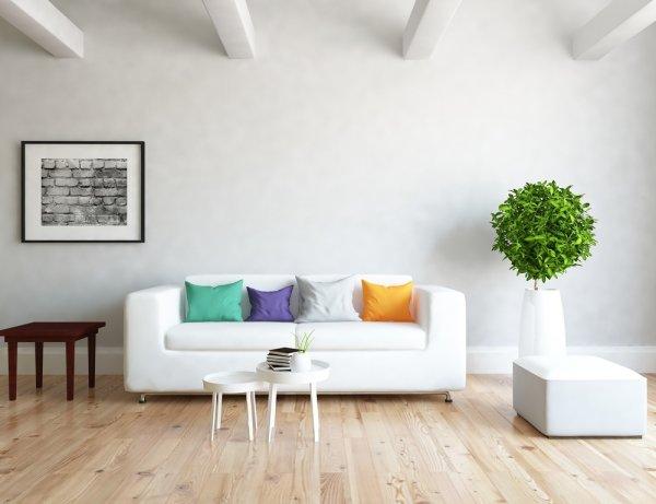 Bingung Menata Ruang Tamu? Inilah 8 Ide Desain Ruang Tamu Low Budget, tapi Tetap Cantik (2020)