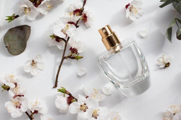 Mau Tahu Parfum Terjangkau dan Berkualitas? Pilihlah 10 Rekomendasi  Parfum Wanita yang Wanginya Tahan Lama Ini (2020)